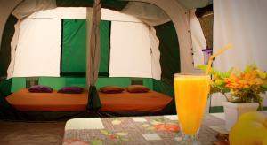 Camping Nopigia, Kempy  Kissamos - big - 6