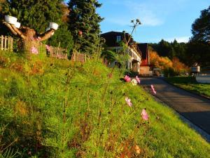 Maison du Kleebach, Ferienparks  Munster - big - 26