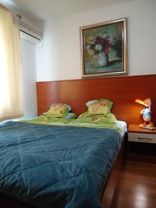Apartments and Rooms Villa Gaga 2, Bed & Breakfast  Budua - big - 3