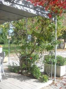 Al Casolare, Hotels  Corinaldo - big - 17