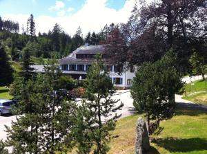 Hotel Sarbacher, Hotely  Gernsbach - big - 19