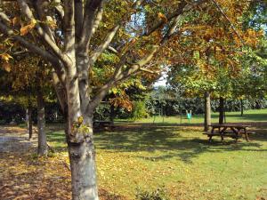 Agriturismo Sant' Anna, Farmházak  Treviso - big - 25