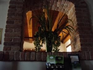 Agriturismo Sant' Anna, Farmházak  Treviso - big - 20