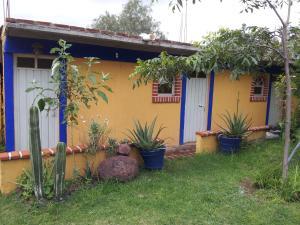 Temazcal Tepeyolotli, Hotel  San Juan Teotihuacán - big - 5
