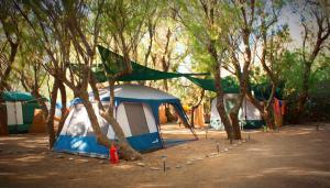 Camping Nopigia, Kempy  Kissamos - big - 19