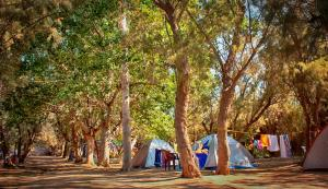 Camping Nopigia, Kempy  Kissamos - big - 17