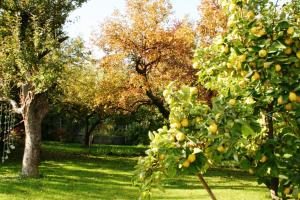 Land Romantik, Дома для отпуска  Urschendorf - big - 17
