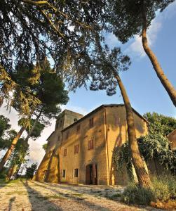 Antico Borgo La Commenda, Aparthotels  Montefiascone - big - 77