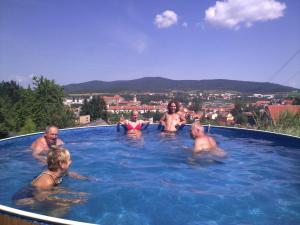 Penzion Do Vrchu, Vendégházak  Český Krumlov - big - 16