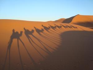 Marhaba Camp, Camel & Sandboarding, Luxury tents  Merzouga - big - 90