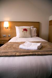 Somerfield Lodge, Bed and breakfasts  Swansea - big - 4