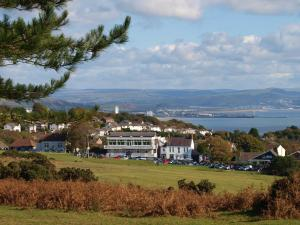 Somerfield Lodge, Bed and breakfasts  Swansea - big - 17