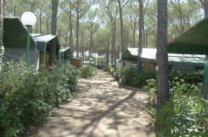 Camping Free Beach, Кемпинги  Марина-ди-Биббона - big - 128