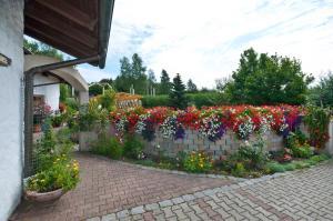 Ferienwohnung beim Goldbachl-Peppi, Apartments  Hohenau - big - 17