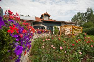 Ferienwohnung beim Goldbachl-Peppi, Apartments  Hohenau - big - 14