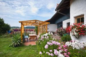Ferienwohnung beim Goldbachl-Peppi, Apartments  Hohenau - big - 3