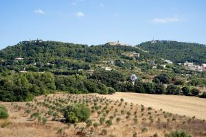 Predi Son Jaumell Hotel Rural (19 of 24)