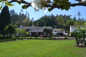 Quintal De Alem Do Ribeiro-Turismo Rural