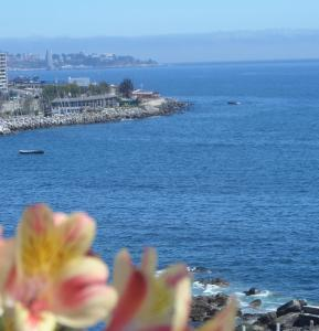 Номер «Премиум» с видом на море