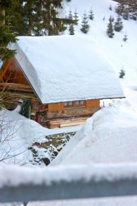 Apartmán Petra Clinic Javor, Apartmanok  Pec pod Sněžkou - big - 17