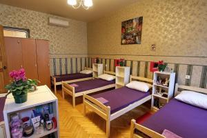 Гостевой дом Polinski, Мини-гостиницы  Санкт-Петербург - big - 10
