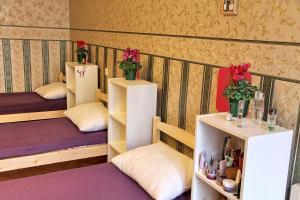 Гостевой дом Polinski, Мини-гостиницы  Санкт-Петербург - big - 12