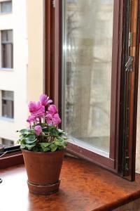 Гостевой дом Polinski, Мини-гостиницы  Санкт-Петербург - big - 42