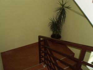 Guest House Almira, Pensionen  Loo - big - 22
