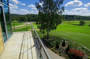 Reinis, Ferienparks  Turaida - big - 60