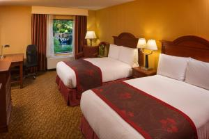 DoubleTree by Hilton Biltmore/Asheville, Hotels  Asheville - big - 2