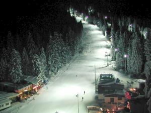 Persey Flora Apartments, Aparthotely  Borovets - big - 72