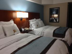 Premium Double Room with Two Double Beds - Non-Smoking