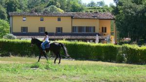 Tenuta Le Sorgive Agriturismo, Farmy  Solferino - big - 58