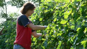 Tenuta Le Sorgive Agriturismo, Farmy  Solferino - big - 63
