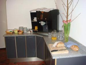 Casa Da Vinci B&B, Bed and breakfasts  Locarno - big - 21