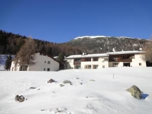 Residenz La Mora, Apartmány  La Punt-Chamues-ch - big - 59