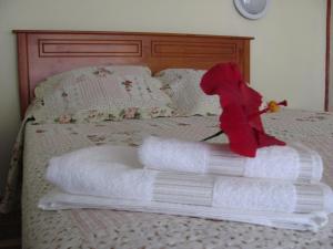 Korina's Guesthouse, Гостевые дома  Ханга-Роа - big - 21