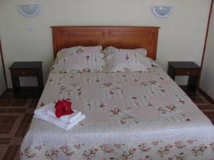 Korina's Guesthouse, Гостевые дома  Ханга-Роа - big - 5