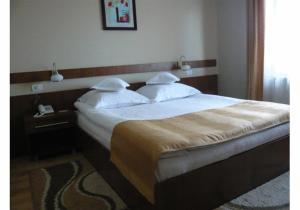 Hotel Crisana Arad, Hotels  Arad - big - 6