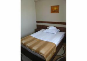 Hotel Crisana Arad, Hotels  Arad - big - 13