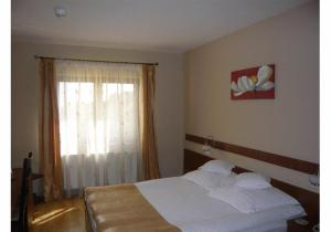 Hotel Crisana Arad, Hotels  Arad - big - 17