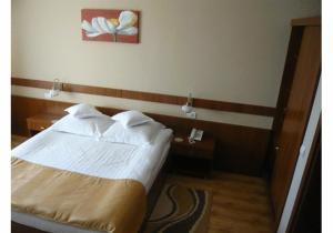 Hotel Crisana Arad, Hotels  Arad - big - 2