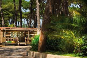 Park Albatros, Holiday parks  San Vincenzo - big - 12