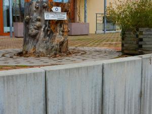 Maison du Kleebach, Ferienparks  Munster - big - 42