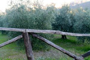 Casa La Portaccia, Ferienwohnungen  Anghiari - big - 32