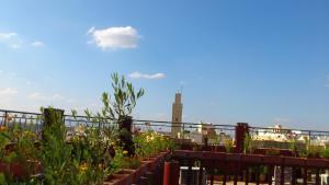Ryad Bab Berdaine, Riads  Meknès - big - 45