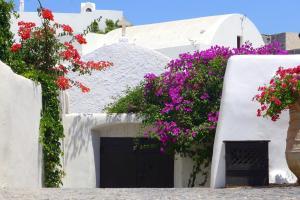 Santorini Heritage Villas, Vily  Megalokhori - big - 56