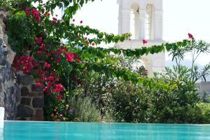 Santorini Heritage Villas, Vily  Megalokhori - big - 26
