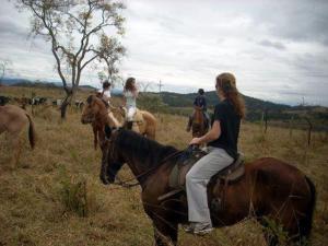 Fazenda Caturama, Prázdninové domy  Areal - big - 23