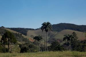 Fazenda Caturama, Country houses  Areal - big - 38